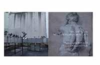 NYC Diptychs - Art: Sanctioned or Found - a book by Ellen Wallenstein