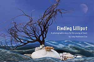 Finding Lilliput - a book by Judy Robinson-Cox