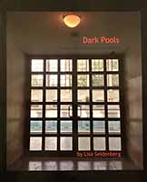 Dark Pools - a book by Lisa Seidenberg