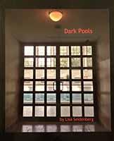 Dark Pools - a book by Lisa Seidenberg