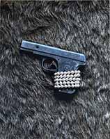Don't Shoot - Book by Joe Greene