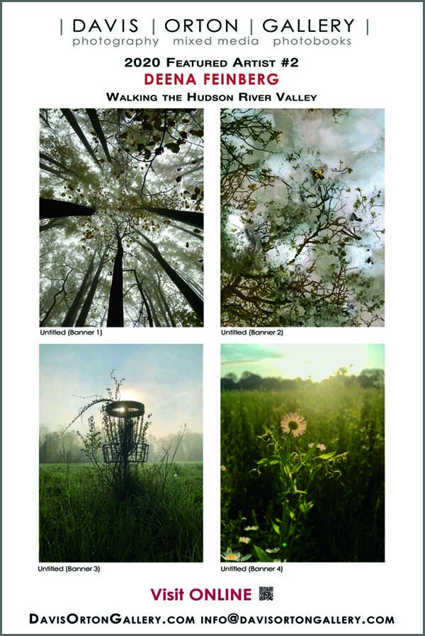 4x6ft Banner-Artist Spotlight 2, Deena Feinberg - Morning Becomes Us, luminous Hudson River Valley landscapes