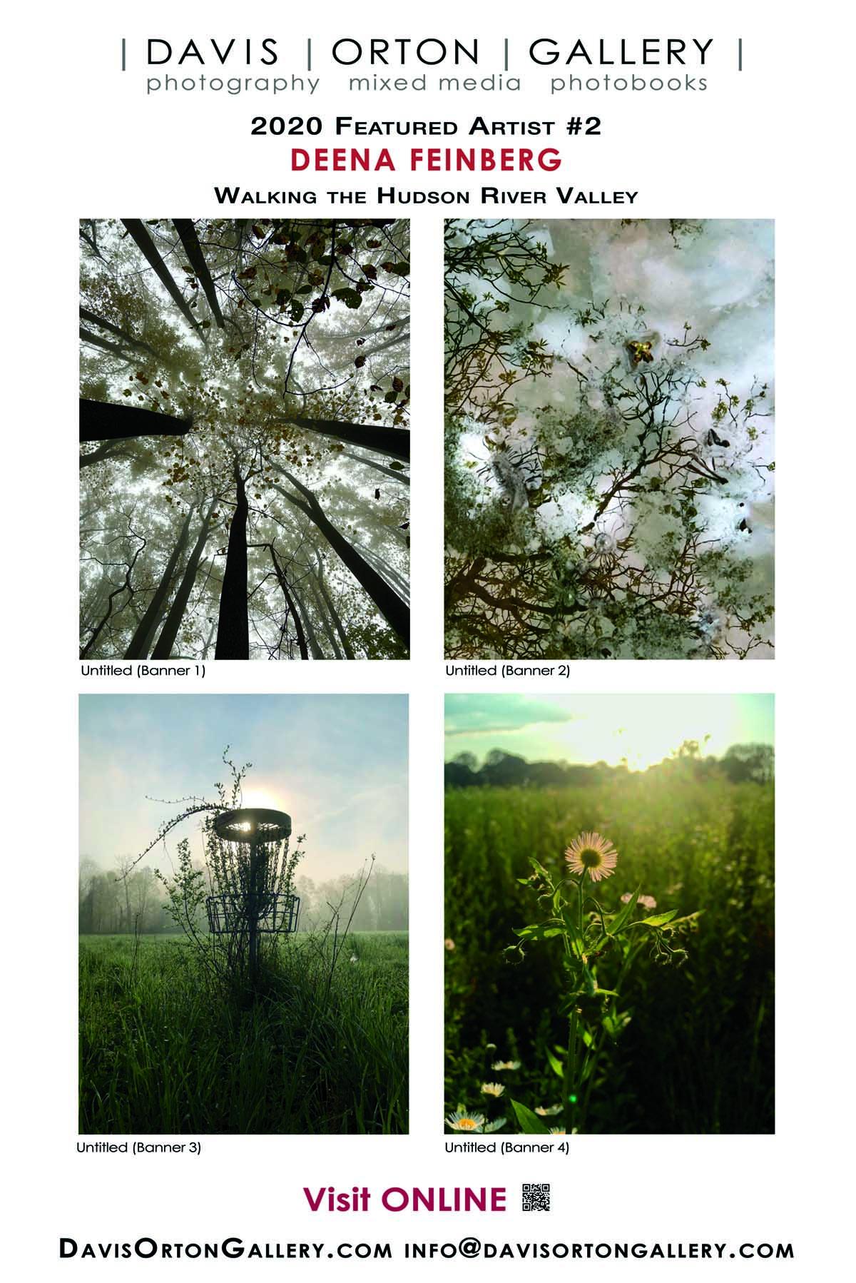 Banner Photo - Artist Spotlight 2, Deena Feinberg - Morning Becomes Us, luminous Hudson River Valley landscapes