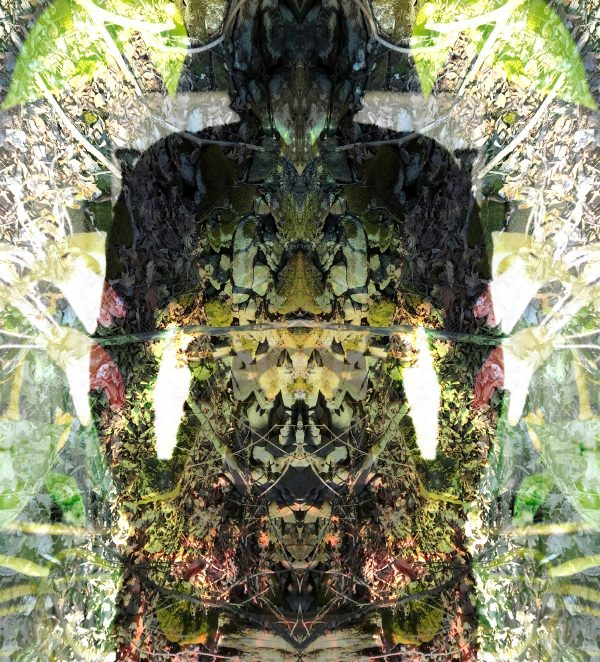 """Jessica Ann Willis, 6.Freyja/Fólkvangr, 2020, Pigment Print, 13""""x13"""", From Norse mythology, Freyja is a goddess associated with love, beauty, fertility, gold, and seiðr. Freyja is the owner of the necklace Brísingamen, rides a chariot pulled by two cats, is accompanied by the boar Hildisvíni, and possesses a cloak of falcon feathers. She has a dwelling in the heavens called Fólkvangr where half of those who die in battle go and will find a place at her table in the hall of Sessrumnir. Freyja is sometimes depicted as a valkyrie."""