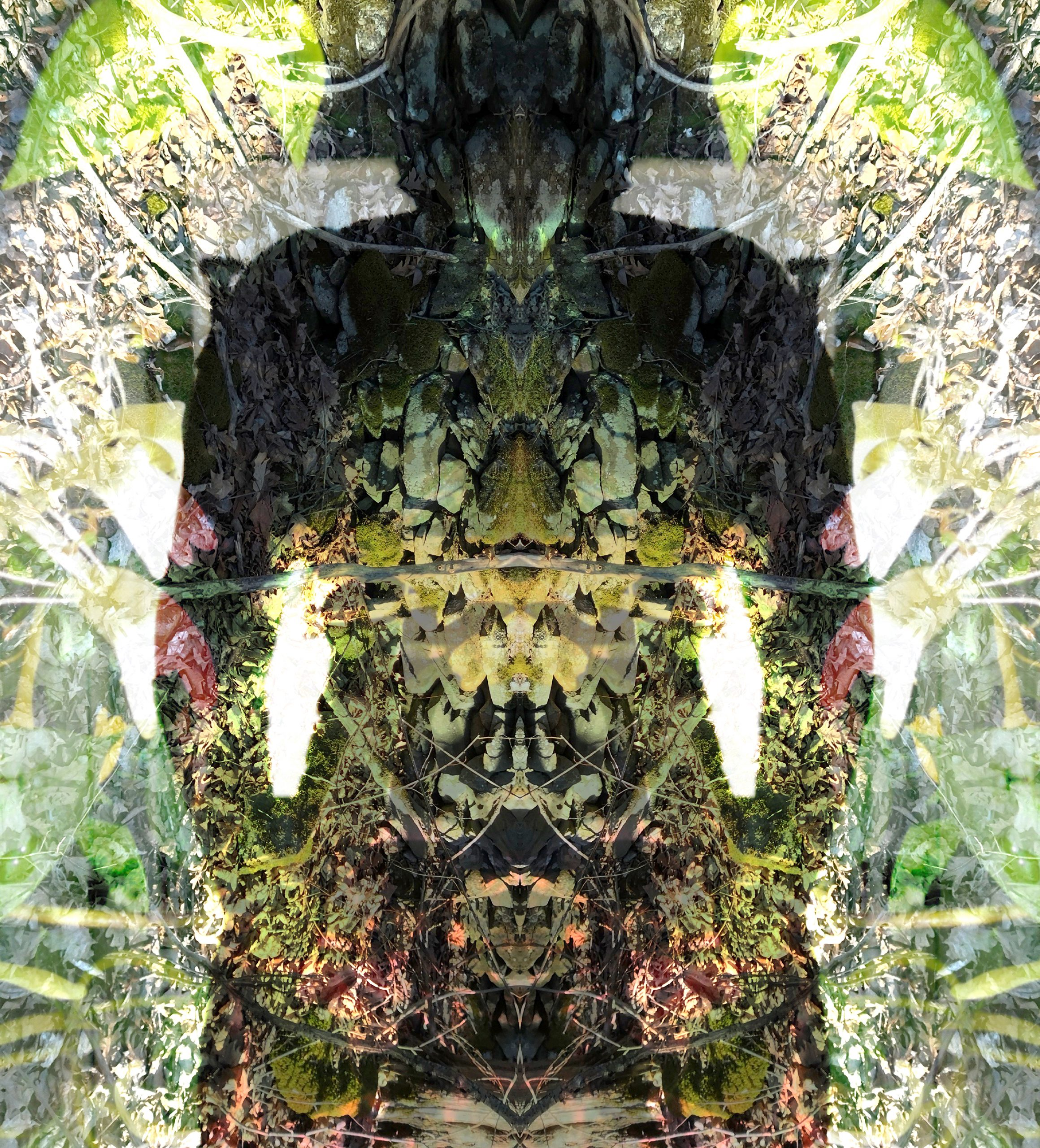 """Jessica Ann Willis, 6. Freyja/Fólkvangr, 2020, Pigment Print, 13""""x13"""", From Norse mythology, Freyja is a goddess associated with love, beauty, fertility, gold, and seiðr. Freyja is the owner of the necklace Brísingamen, rides a chariot pulled by two cats, is accompanied by the boar Hildisvíni, and possesses a cloak of falcon feathers. She has a dwelling in the heavens called Fólkvangr where half of those who die in battle go and will find a place at her table in the hall of Sessrumnir. Freyja is sometimes depicted as a valkyrie."""