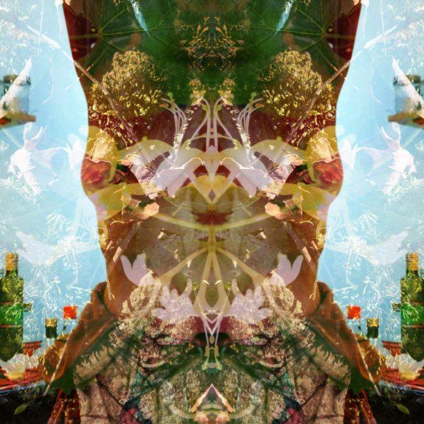 "Jessica Ann Willis, Emergence, Chondrichthyes, 2020, Pigment print, 15""x15"""