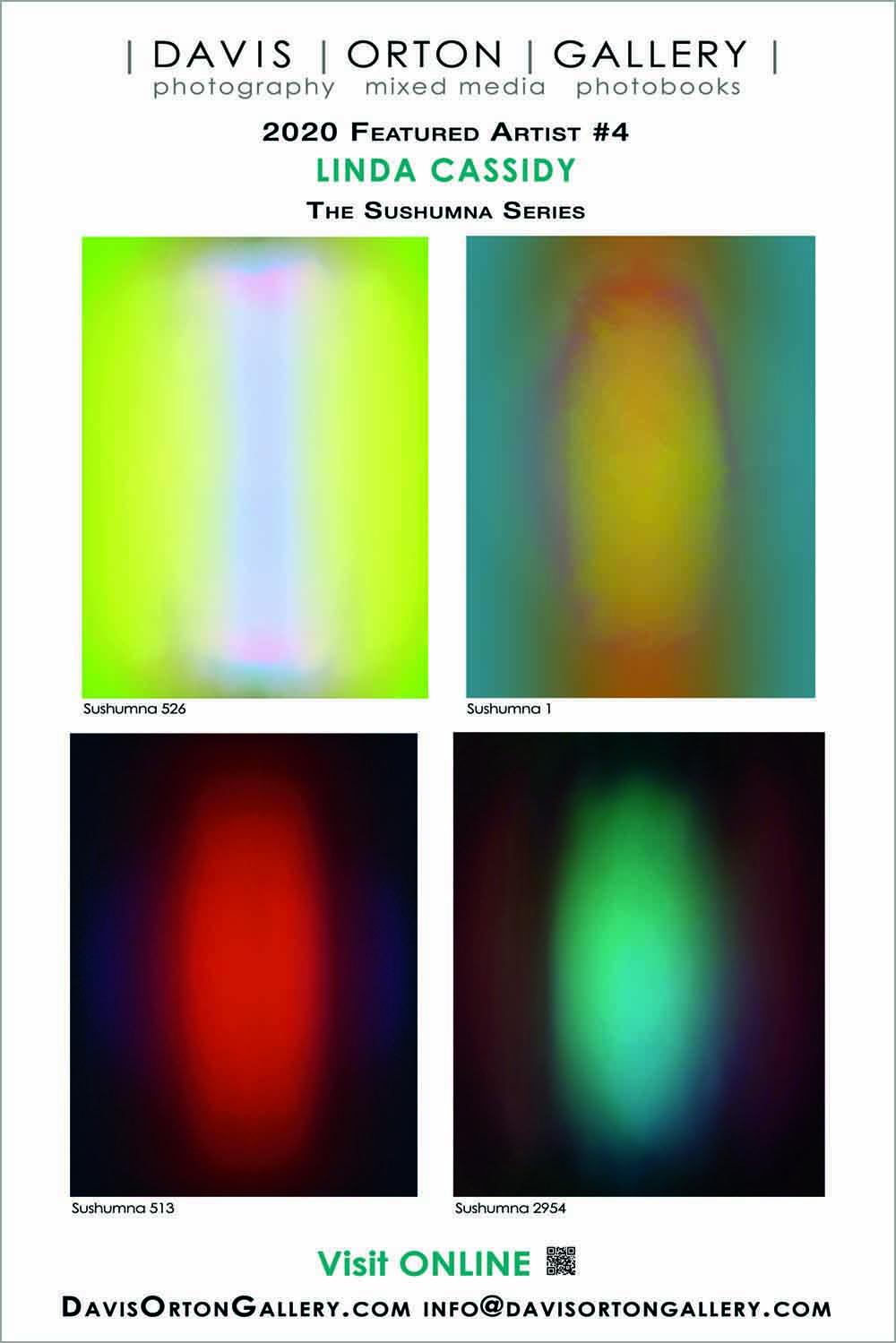 Davis Orton Gallery, Artist Spotlight 4, Linda Cassidy banner