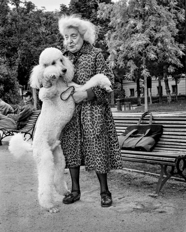 photo, Rebecca Rothey, Parisian With Poodle