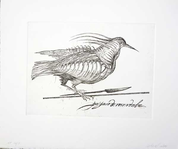 "Bird of Rosendale , 1998, Etching edition of 10, Available 5: 1 PP, 3 AP, 1 framed in silver, 8.75"" x 11.75"" image, 14 x 17 inches"
