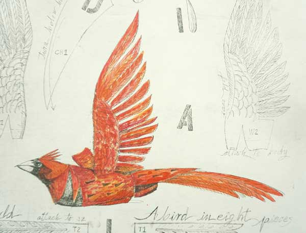 """Cardinal of RDUA , Cardinal bird can be hand colored in red, 2011, Etching edition of 12 Available 10, 1 framed in silver, 20 x 16 inches image on 30.25 x 22.5"""" paper."""