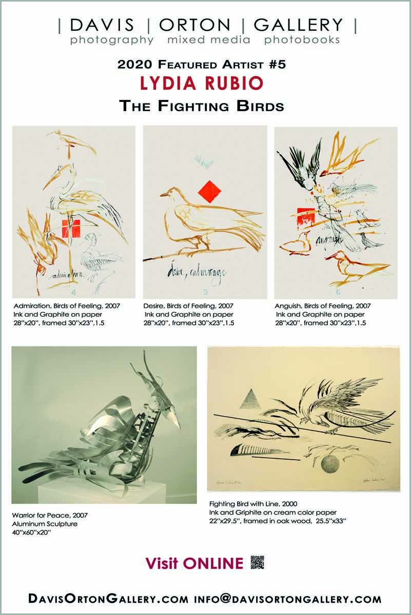 Davis Orton Gallery banner, Lydia Rubio, The Fighting Birds