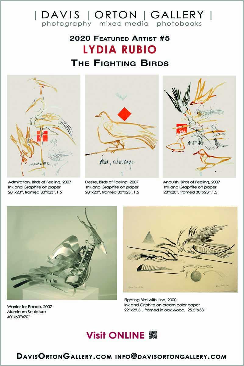 Davis Orton Gallery banner, Lydia Rubio, The Fighting Birds