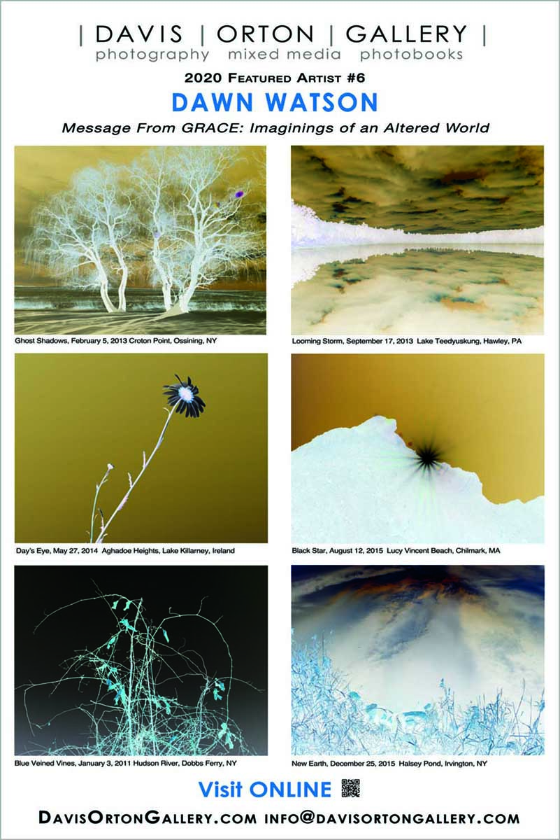 Davis Orton Gallery banner featuring photography by Dawn Watson in our artist spotlight series