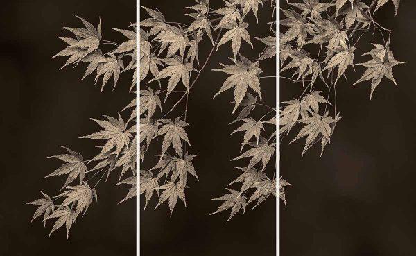 Maple Leaves by Jim Turner